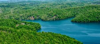 Norris Lake Tennessee Map by Rainbow Resort Homes For Sale At Norris Lake Tn
