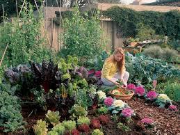 free plan your cool season garden sunset