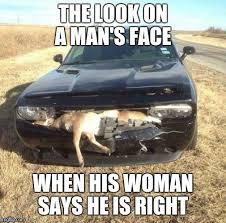 Funny Deer Memes - image tagged in deer in headlights funny memes original meme true