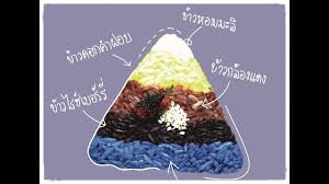 cuisine i review meena rice based cuisine ข าวหลากส ท ร านม นา เช ยงใหม