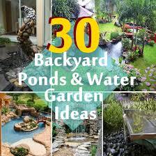 Backyard Ponds Ideas 30 Beautiful Backyard Ponds And Water Garden Ideas Diy Home