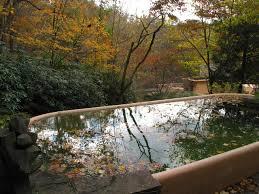 interior falling waterfall outdor pool design frank lloyd wright