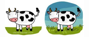 step by step drawing of a cow