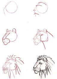 cómo aprender a dibujar drawings learning and lions
