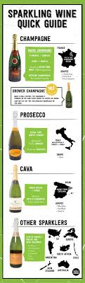 wine facts kinds of wine best 25 wine guide ideas on wine wine chart