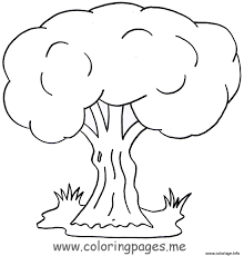 Coloriage arbre 125  JeColoriecom