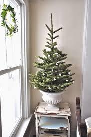 best 25 small christmas trees ideas on pinterest xmas tree