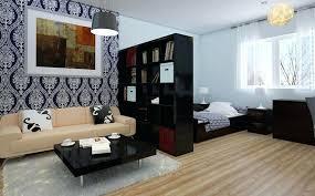 Bedroom Divider Ideas Studio Room Divider Ideas Home Design Ideas