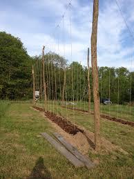 what we grow hoffman appalachian farm