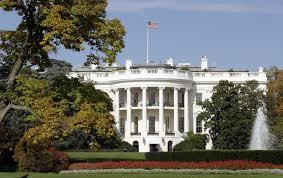 exclusive listen to controversial white house terrorism adviser