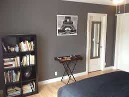 behr amazon stone living room accent wall living rooms