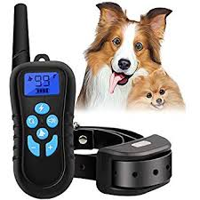 Amazon Iduola Dog Training Collar with Remote Dog Training