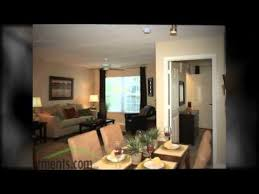 one bedroom apartments ta fl located in ta florida one bedroom apartments in ta fl home design financeloan us