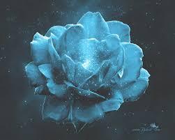 Teal Roses Flora Rybird Music