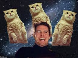 Tom Cruise Meme - tom cruise cats blank template imgflip
