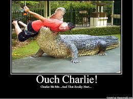 Charlie Meme - image 4184 charlie bit my finger know your meme