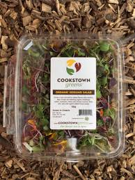 specialty retail cookstown greens premium organic produce