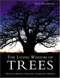 the living wisdom of trees natural history folklore symbolism