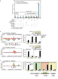 motif analysis identifies causal snps in enhancers effect of
