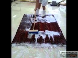 Best Way To Clean Shaggy Rugs How To Clean Your Rug By Hand Wash Youtube