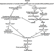 What Is The Standard Size Of A Pool Table Frontiers A Modular Method For The Extraction Of Dna And Rna