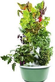 tower garden container vegetable gardening