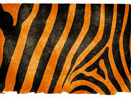 halloween stripe background tiger stripes background hd