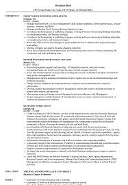 sle resume for business analysts degree celsius symbol business operations resume sles velvet jobs