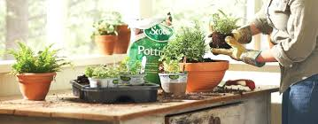 image of best indoor herb garden light ideasindoor ideas pinterest