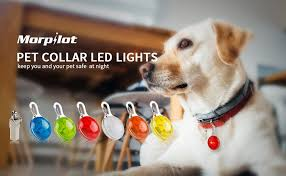 dog collar lights waterproof morpilot dog cat clip on pet collar light waterproof led dog collar
