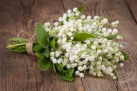 wedding flowers valley wedding flowers and their meanings your wedding ni