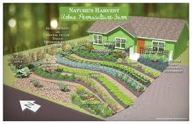 Permaculture Vegetable Garden Layout Permaculture Design The Druid S Garden