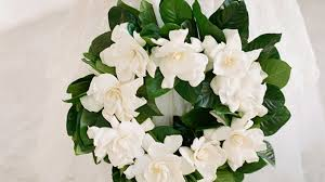 10 ways to incorporate gardenias into your wedding southern living