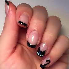 best 20 cat claw nails ideas on pinterest cut nails pet food