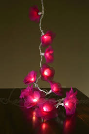 String Of Flower Lights by 20 Or 35 Led Nylon Rose Flower Aus Plug String Fairy Lights