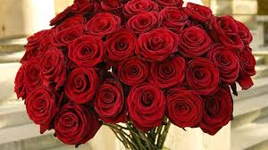 roses valentines day if it s s day it s got to be roses s day