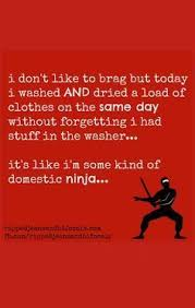 get a load of all i m a domestic the tuesday meme humor quotes