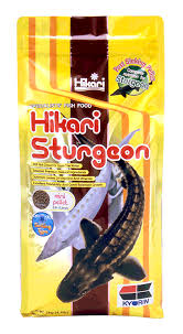 hikari massivore sinking pellets sinking archives hikari sales usa