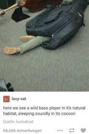 Bass Player Meme - wild bass player meme by tekanx memedroid