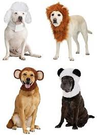 Panda Bear Halloween Costumes Animal Poodle Lion Monkey Panda Bear Hat Hoodie Pet Dog Halloween