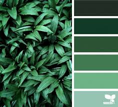 color combination for green which color suits green tips for successful color combinations