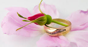 Rose Wedding Ring by Wedding Ring Rose Stock Photos Royalty Free Stock Images