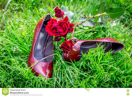wedding shoes for grass wedding shoes in grass with roses stock photo image 80271081