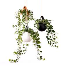sling hanging planter in black urban avenue