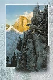 pumpernickel greeting cards pumpernickel press greeting card return of the falcon andy