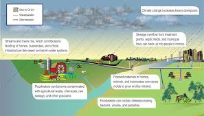 Water Borne Diseases In Plants Human Health National Climate Assessment