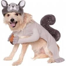 Halloween Costumes Large Dogs 117 Halloween Costumes Images Costumes