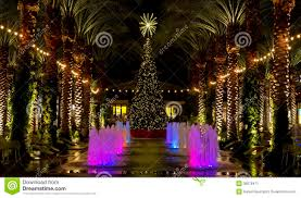 arizona shopping mall christmas tree and lighted palm trees stock