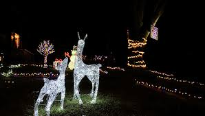 lighting up the season love of christmas lights develops into