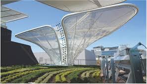 solar trees semitransparent organic solar cells